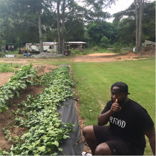 Chef Thal, picking fresh greens for his restaurant